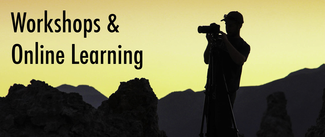 workshops and online learning